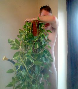 Naked man hiding behind house plant