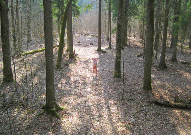 Man naked in the woods