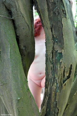 Looking through the trees at a naked woman