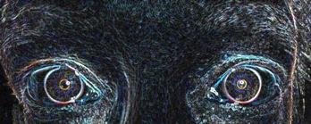 Posterize eyes