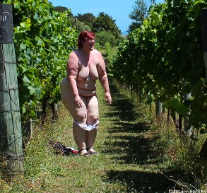 Curvaceous Dee Vineyard Scavenger Hunt