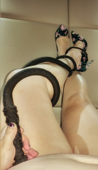 Honey with black whip twisted round her leg