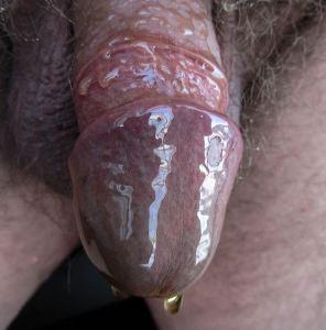 Mans penis covered in honey
