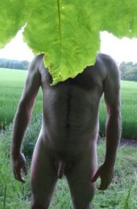 Nude man with leaf over his face