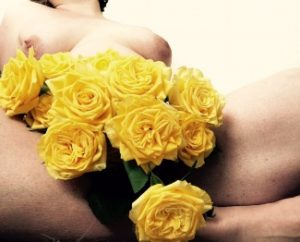 Yellow Roses between womans naked thighs