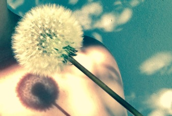 woman with dandilion shadow on her skin