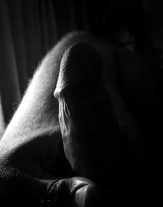 Black and white shot of erect penis