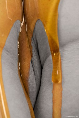 Close up shot of honey running down over a womans vulva
