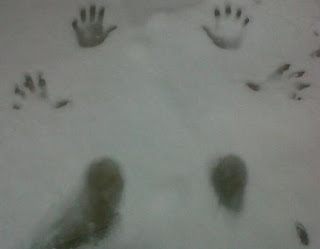 Hand and feet prints in the snow