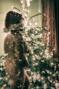 Molly with christmas tree lights shining through her body