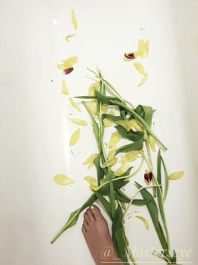 Wilted tulips in bathtub with a womans foot just peeking into the bottom of the image