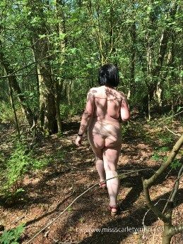 Rear view of woman walking naked in the woods