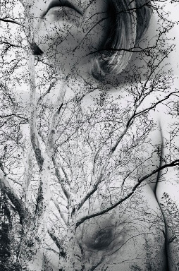 Double exposure of winter trees over topless woman