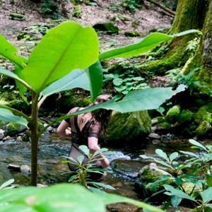 woman in balck lingerie in a river