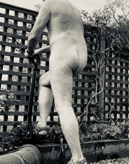 Nude man digging in the garden