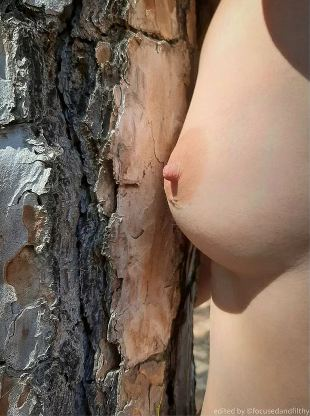 Womans naked breast up against tree bark