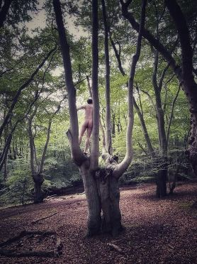 man naked in tall tree
