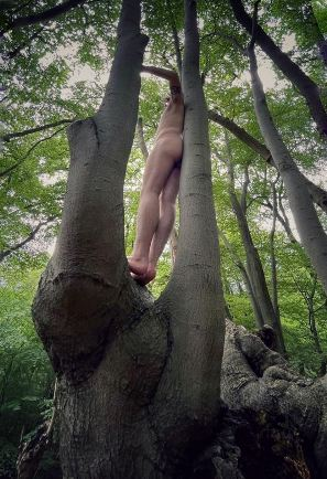 naked person standing in a tree